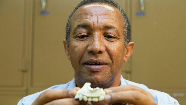 Палеонтологи нашли в Эфиопии останки «Люси»