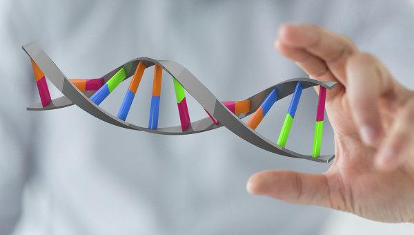 Молекула жизни: как ДНК стала «царицей биологии»