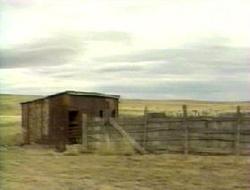 Разбивалось ли Нло в Нью-Мексико?