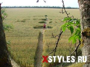 На поле в Краснодарском крае появился круг \»якорь\»
