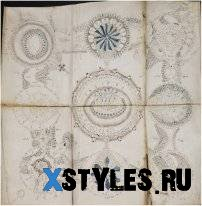 Перевод картинок манускрипта Войнича.