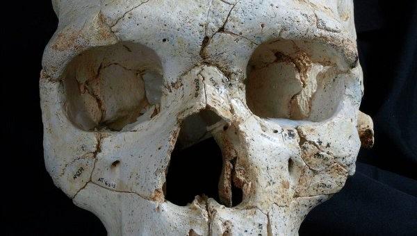 Первое преступление на Земле состоялось 430 тысяч лет назад